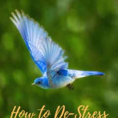 How to De-Stress Your Distress